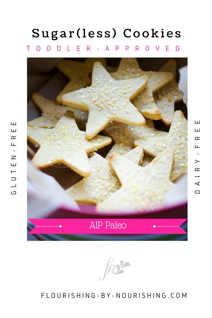 Toddler Sugar(less) Cookies (AIP PALEO)